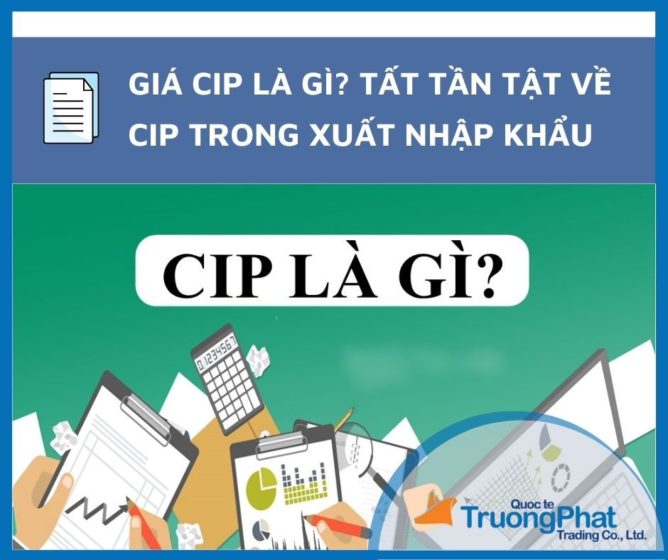 Giá CIP là gì? Tất Tần Tật về CIP Trong Xuất Nhập Khẩu